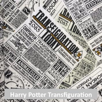 Harry Potter Transfiguration Today